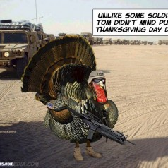 Free Turkeys For Any Veterans & US Military Members